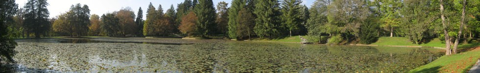 Brdo Estate - Lake