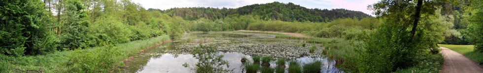 Ponds in the Valley of Draga - Middle Pond