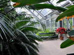 Botanical Garden - Tropical Glasshouse