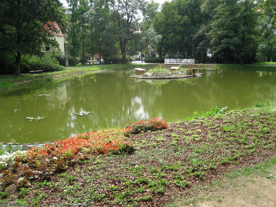 Maribor city park for Artificial pond
